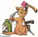 O-Kot - zdjęcie